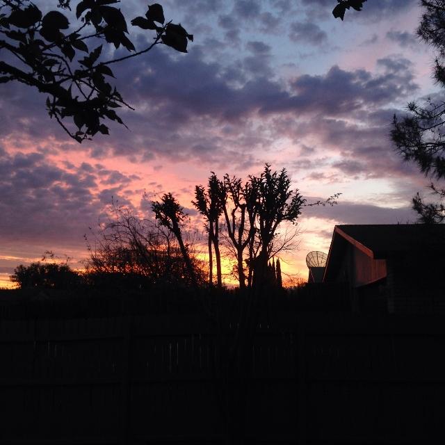 Sunrise in a Metroplex suburb