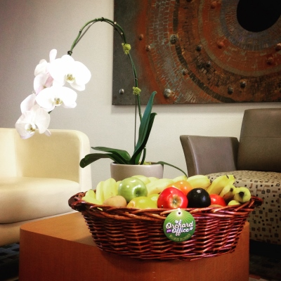 Fruit basket in office foyer with long-stemmed flower in vase in background
