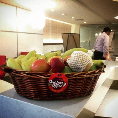 Office workers in a meeting behind a wicker basket of fruit