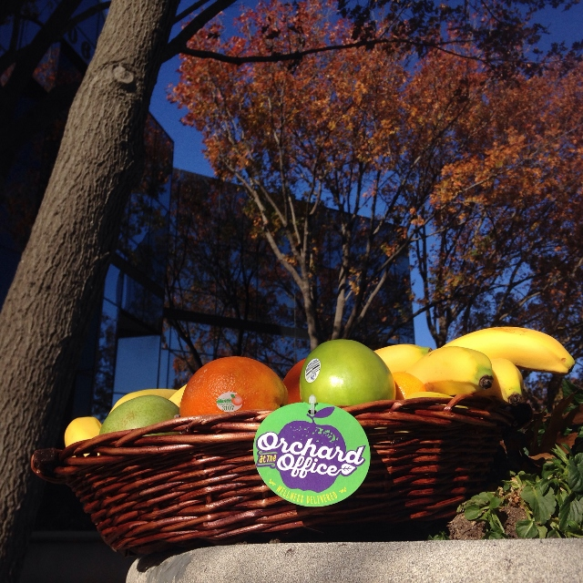 A basket of fresh fruit outside a glass office building in autumn