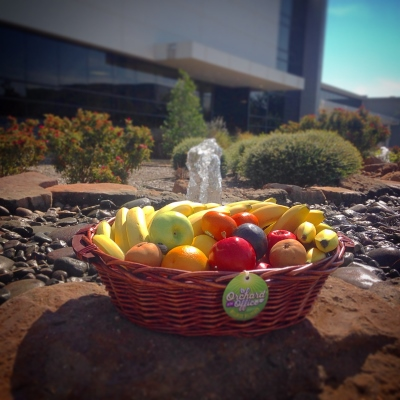 Fruit basket in front of office rock garden with waterfall