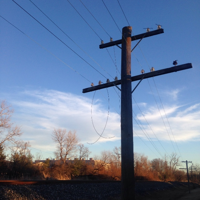 Communication lines running parallel to train tracks