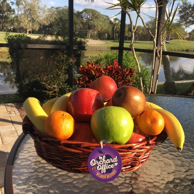 Fruit basket in a Florida outdoor work area
