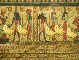 History of the banana