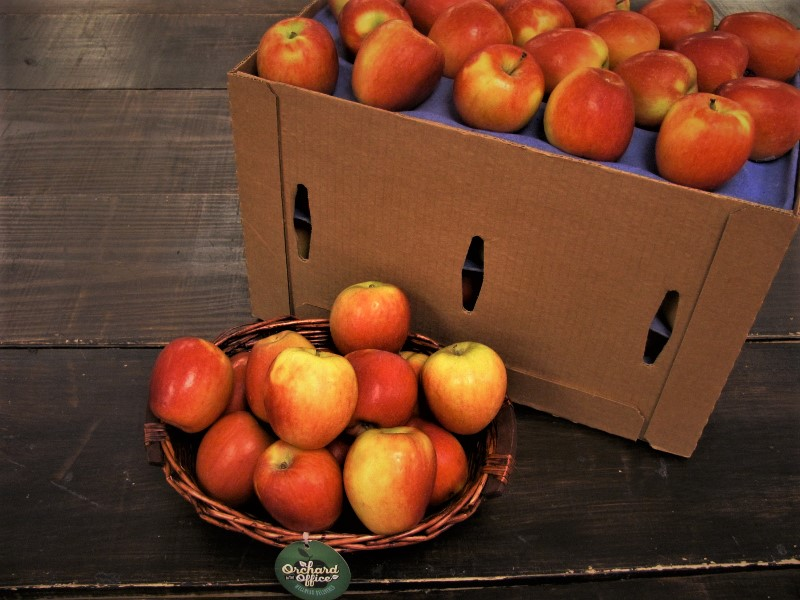 Box and basket of Jazz Apples