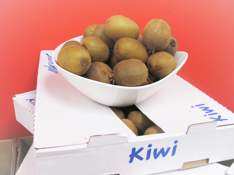 Kiwi arranged in a white bowl
