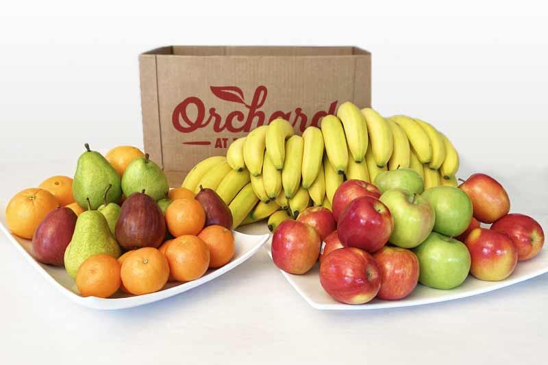 ORCHARD Home BULK Fruit Delivery