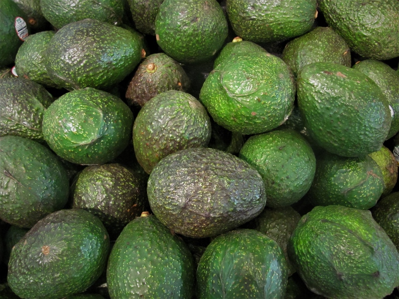 A box of Hass avocados